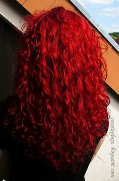 20 long curly hair color ideas lovely locks dyed red hair, c Dyed Red Hair, Colored Curly Hair, Dye My Hair, New Hair, Magenta Hair Colors, Bright Red Hair, Red Hair Color, Color Red, Colorful Hair
