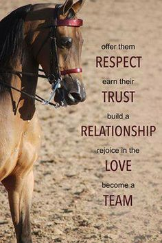 Show them respect and gain their respect and in then you'll receive their trust and the unbreakable bond and love we all long for.