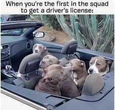 When you're the first in the squad,,,,