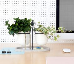 Fabrica's Statera desk tidy brings plants into the workplace