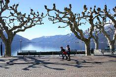 Seeblick von der Piazza in Ascona. Einer der schönsten Plätze der Welt.
