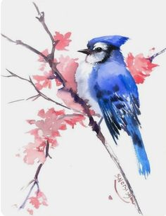Blue Jay original watercolor painting 10 x 8 in blue hay minimalist painitng, blue jay and spring flowers pink blue wall art - tattoo - Easy Watercolor, Watercolor Animals, Tattoo Watercolor, Painting & Drawing, Watercolor Paintings, Painting Illustrations, Bird Paintings, Painting Tattoo, Watercolor Artists