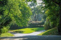 Freizeitvergnügen im Türkenschanzpark Parks, Vienna, Austria, Sidewalk, Country Roads, Rare Plants, Exotic Plants, Walking Paths