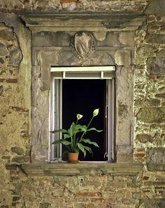 Flowers in Window, Orvieto, Italy | por mjphoto-graphics