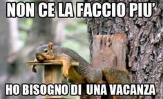 IO VIVO A ROMA!!! Fb