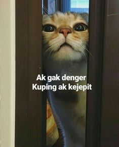 Quotes Lucu, Quotes Galau, Jokes Quotes, Memes Funny Faces, Funny Kpop Memes, Cute Memes, Cartoon Jokes, Meme Comics, Mood Quotes