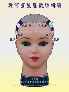 橫髮片劃分(Horizontal parting)在第2設計區的構圖-前面呈現