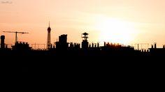 vue de la tour eiffel depuis les toits de paris