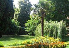 Jardin des Plantes - Poitiers (86 - Vienne)