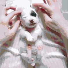Bedtime Massage