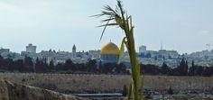 Niedziela Palmowa 2017. Z Betfage do Jerozolimy. – Orygenes+