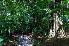 ecotermales    - Costa Rica