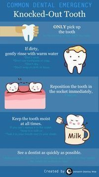 Top Oral Health Advice To Keep Your Teeth Healthy. The smile on your face is what people first notice about you, so caring for your teeth is very important. Unluckily, picking the best dental care tips migh Dental Facts, Dental Humor, Dental Hygiene, Dental Care, Dental Quotes, Dental Kids, Teeth Health, Oral Health, Dental Health