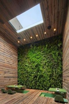 muro verde 11