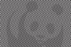 Can You Spot The Animal Hiding In This Optical Illusion? Most People Can't.-(Photo Gallery)-Please check the website for more pics