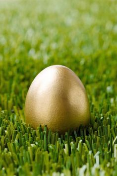 THE GOLDEN EGG – Even if you're dedicated to a more traditional hunt, throwing a special egg into the mix can't hurt. Whoever finds the golden egg wins serious bragging rights — and perhaps an extra special treat, like money or a gift card. Click through to see the entire gallery and for more east egg hunt ideas.