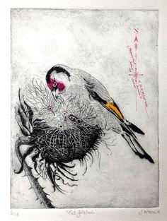Julia McKenzie Artist Goldfinch drypoint etching, screen print and ink 16 Tattoo, Drypoint Etching, Etching Prints, Textile Fiber Art, Goldfinch, Drawing Base, Wildlife Art, Print Artist, Gravure