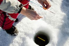 Winter Carnivals in MN: 5 Places to Enjoy Winter in Minnesota - Ice Fishing.  Oak Point Resort on Leech Lake between Walker and Cass Lake is a GREAT place to visit sometime!