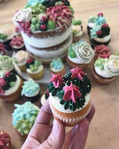 Adorable cactus cupcakes!  The succulents look like they're all made with buttercream icing.