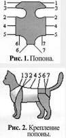 Resultado de imagem para hand made dog wear одежда для собак своими руками