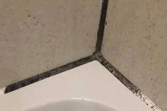 Woman's tip for making mouldy shower tiles look good as new - without scrubbing - Mirror Online Home Design, Remove Mold From Shower, Shower Cap, Shower Tiles, Bathroom Cleaning Hacks, Cleaning Tips, Extractor Fans, Shower Cleaner, Toilet Bowl
