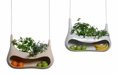 Kitchen window: For keeping fruit and growing herbs