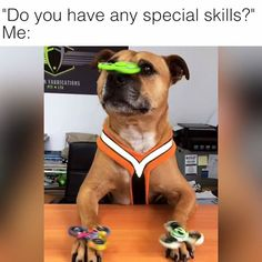 The only skill that matters tbh  Credit: AXLES Workshop