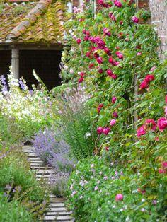 Cottage Garden. English roses, catming, geranium, delphinium, etc... The Teddington Gardener.