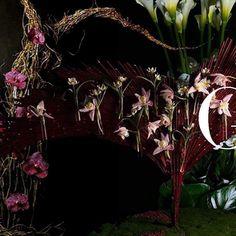 店舗様へのdisplay  その場を支配するような空気を出せるまで想像力を磨く  #ganon #hananingen #flower  #hair #flowerart #flowerdesign  #design  #fashion  #tokyo  #sapporo #花人間 #花 #東京#arrangement  #bouquet  #flowershop #flowerstagram  #war #photo #art #message #peace #flowlarts #japan  #japaneseartist