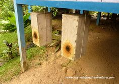 """""""Bleh-teh"""" ~ man-made bee hives/ nests for stingless bees in the village of Semban, Sarawak (Malaysia)"""