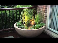Garden Pond Ideas :: Empress of Dirt - Melissa's clipboard on Hometalk :: Hometalk