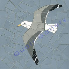 Gull (Flying)
