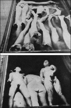 scenes of horros at camps due to barbaric medical experiments The Undeniable Holocaust: A Pictorial Archive of Nazi Atrocities