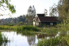 1 _ محمية القالة (ولاية الطارف) حسب رايي اجمل محميات الجزائر تضم ثلاث بحيرات , غابات و شواطئ و تلقب بمدينة المرجان