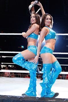 29 Wwe Ideas Bella Twins Wwe Wwe Divas