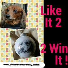 "Enger to win a portrait ornament of your pet!  Simply ""like"" this graphic to enter.  Tag a friend so they can enter too.  Winner will be announced Sunday 7/19.  Open to US and Canada addresses.  Winner will just need to provide a clear photo of the pet.  #dogs #dogsofinstagram #ILOVEDOGS #dogsrock #pets #cats #christmasornaments #horses #ilovemydog #instagramdogs #dogstagram #happydog #doglife #dogoftheday"