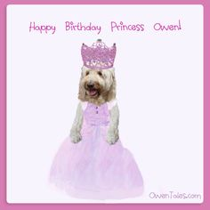 Thank you everyone for dressing up to celebrate my 9th Birthday!!! Happy Birthday Princess, 9th Birthday, Secret Photo, New Books, Dressing, Apple, Future, Celebrities, Top