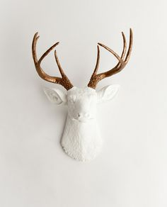 The Lydia | Stag Deer Head | Faux Taxidermy | White w/ Bronze Antlers - White Faux Taxidermy
