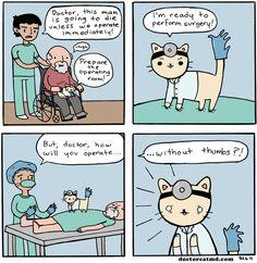 Doctor Cat 2 (http://doctorcatmd.com/2011-01-31/doctor-cat-2)