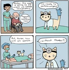 Doctor Cat 2 (http://doctorcatmd.com/2011-01-31/doctor-cat-2)