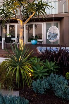 beachside garden: 6 ideas for luxe outdoor living