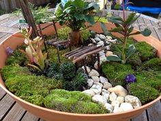 #fairy garden idea in a bowl #fairy garden - this lovely idea is from the site, she has used, size appropriate seedlings from a garden centre. The furniture was made from gathered twigs and wired together.  /simple and lovely  :)