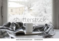 Window Winter Stock Photos, Images, & Pictures | Shutterstock