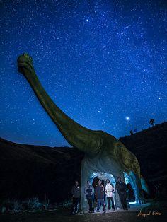 20131207 Nocturnas prehistóricas_038