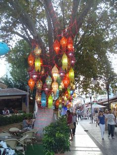 Lamp Tree in sweet port town of Kusadasi, Turkey The best thing to buy in Turkey for me is the beautiful hand blown glass lamps. Istanbul, Turkish Lamps, Kusadasi, Holiday Resort, Shore Excursions, Santorini Greece, Summer Travel, Public Art, Holiday Destinations
