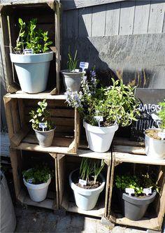 Kleine tuin make-over - Gewoon Marieke
