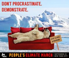 """""""Don't Procrastinate. Demonstrate. Stop Global Warming."""" People's Climate March design from NRDC. #PeoplesClimate"""