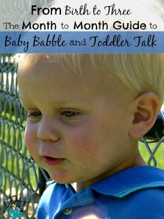 From Birth to Three! The Month to Month Guide to Baby Babble and Toddler Talk!