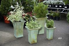 22 best planters for modern curb appeal images window boxes curb rh pinterest com