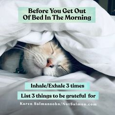 Before you get out of bed in the morning: 1. inhale/exhale 3 times 2. List 3 things to be grateful for Get more habits which inspire joy in my book HAPPY HABITS! Happiness Quotes, Happy Quotes, Morning Habits, Inhale Exhale, Getting Out Of Bed, 3 Things, Self Care, Breakup, Grateful